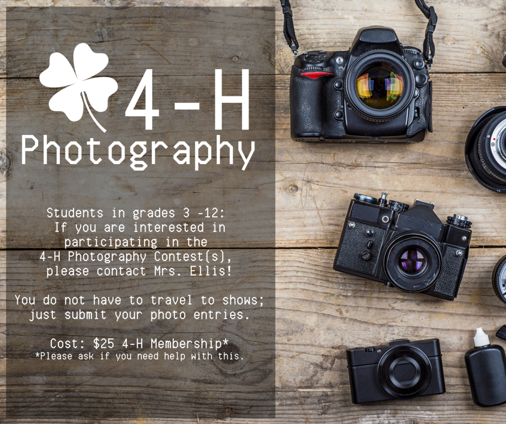 Contact Mrs. Ellis to learn more about Photography through 4-H!