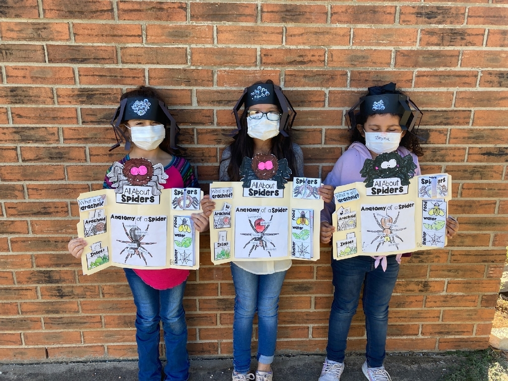 1st grade with spider research