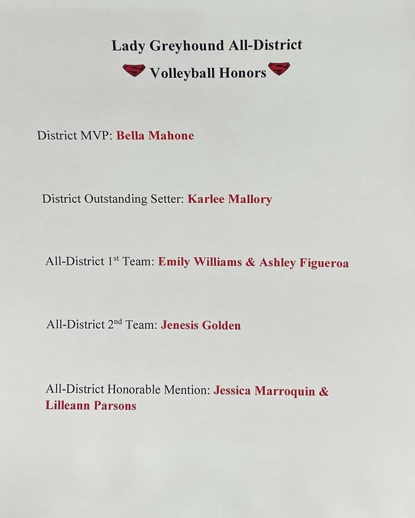 lady hounds volleyball honors