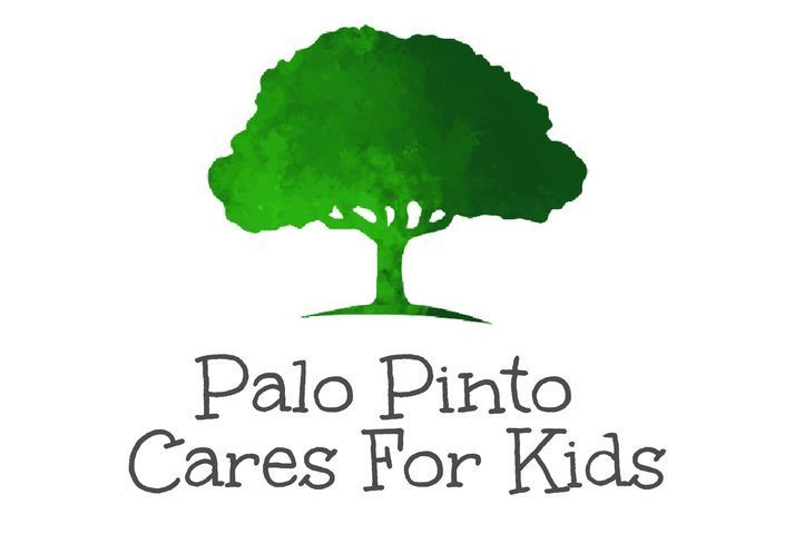 palo pinto cares for kids