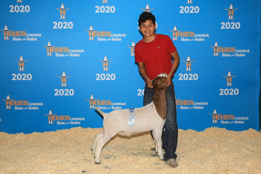 Avelardo and his goat, Miles, who won 14th place at the Houston Stock Show!