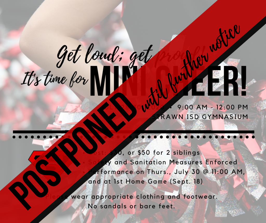 Mini Cheer Camp is POSTPONED